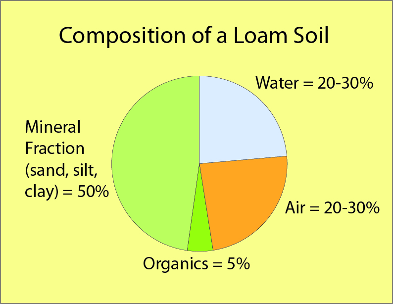 Composition of a loam soil ashley nickole andrews for Soil composition definition